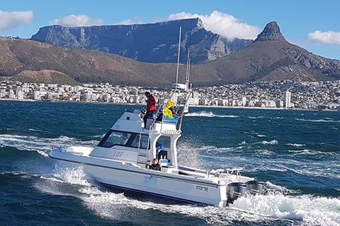 deep sea fishing charters cape town hout bay fishing tuna fishing edit small