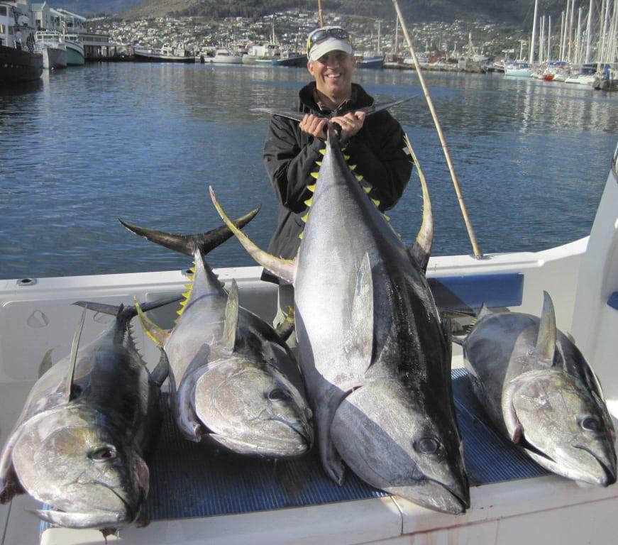 Deep sea fishing charters cape town tuna fishing charters for Tuna fishing charters