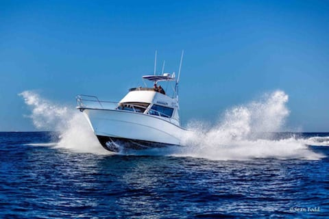 Rodman-deep sea fishing charters cape town 480x320